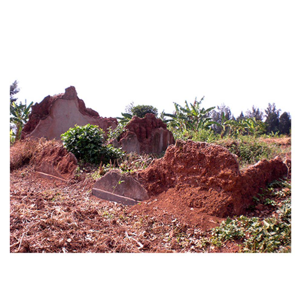 ruines maison